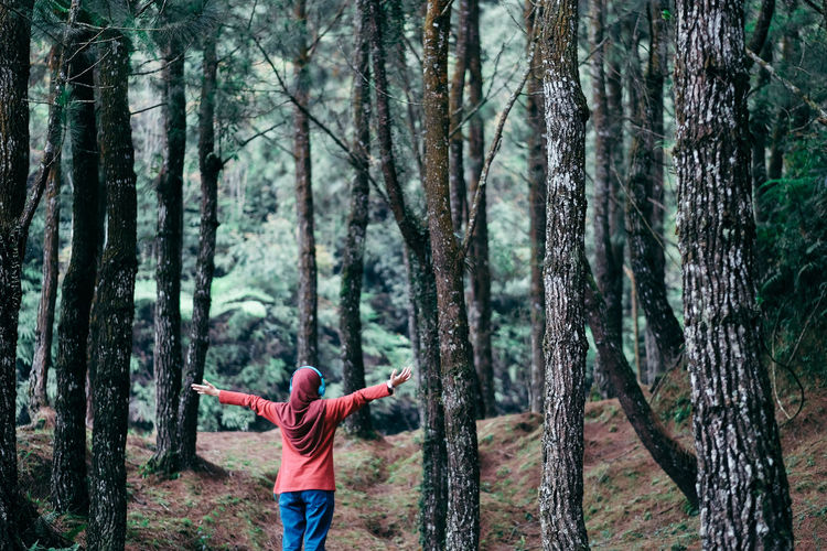 Rear view of teenage girl with arms outstretched standing in forest