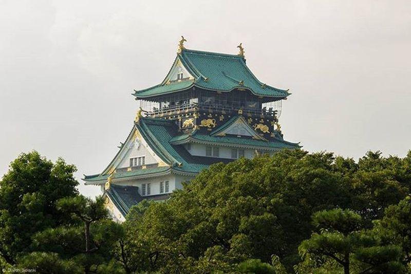 Osaka-jo castle Castle OSAKA Osakacastle Japan nippon travelling travel photooftheday photography canonuk trees green canon600d openmyworld Seeing The Sights