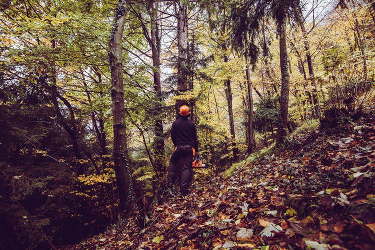 Full length of man walking in forest