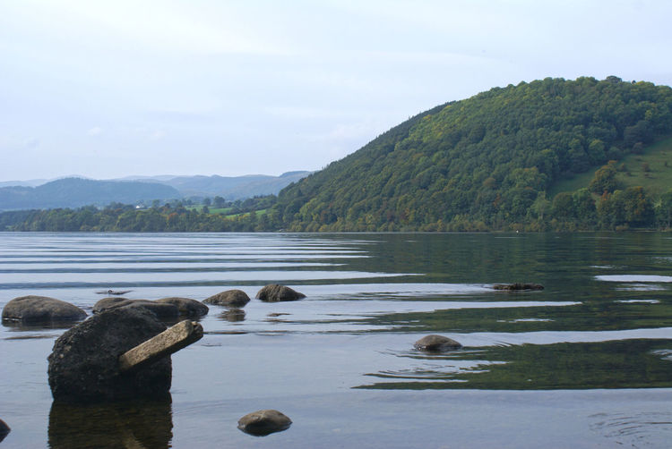 Country Countryside Cumbria Lake Lake District Lakeview Relaxation Relaxation Time Summer Tranquil Scene Tranquility Travel Photography Traveling Ullswater
