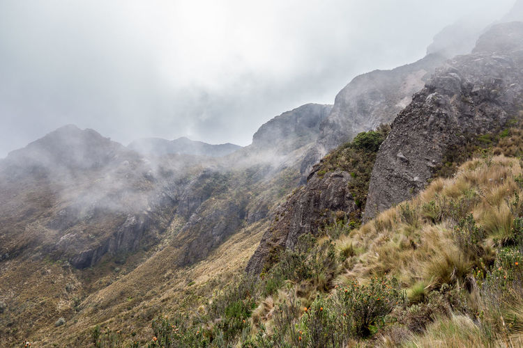 rucu pinchincha Rucu Pichincha Fog Hiking Trail Landscape Mountain Mountain Peak Mountain Range Nature Outdoors Scenics - Nature Tranquil Scene Tranquility Volcano
