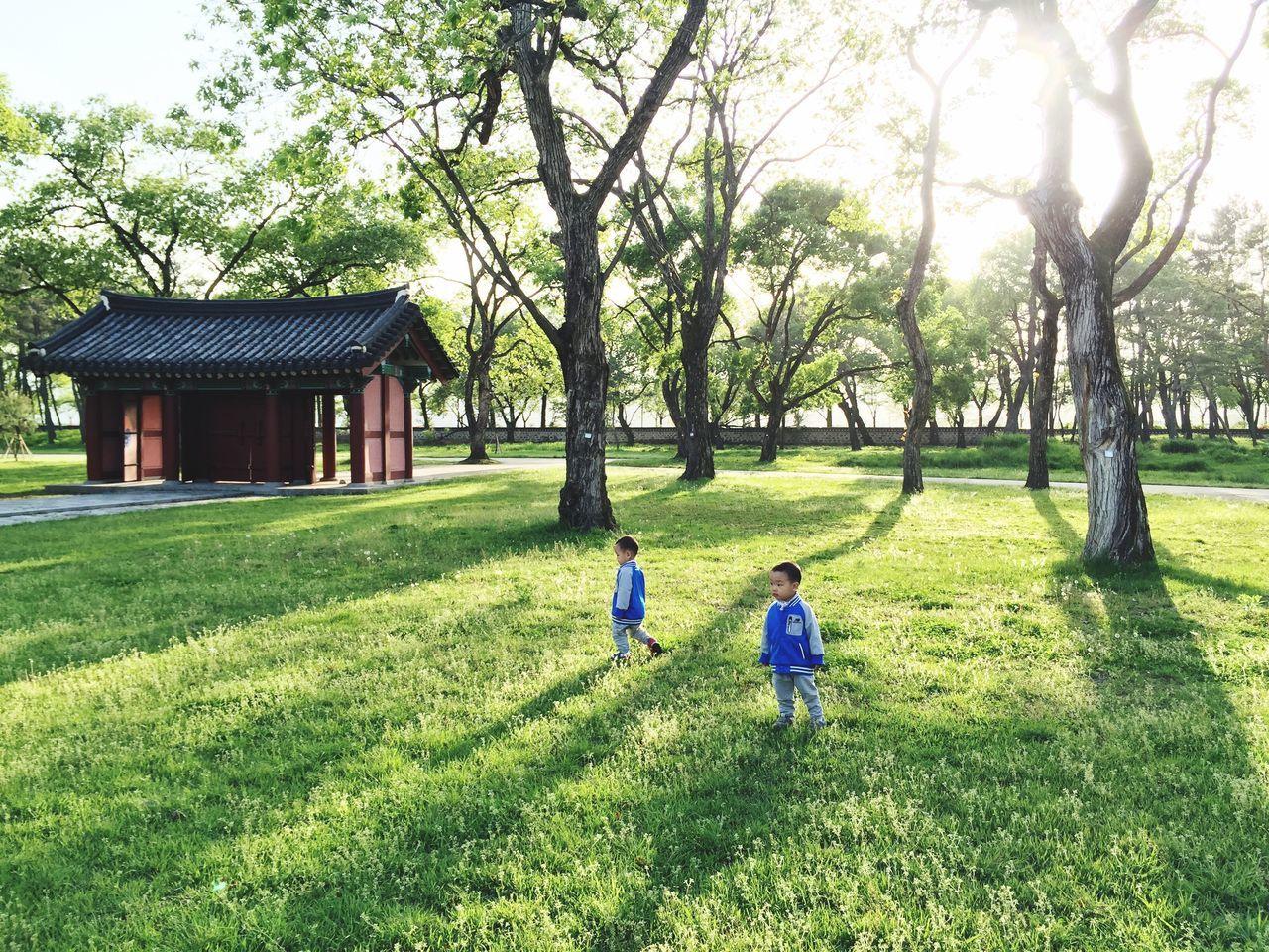 Siblings On Grassy Field Against Trees