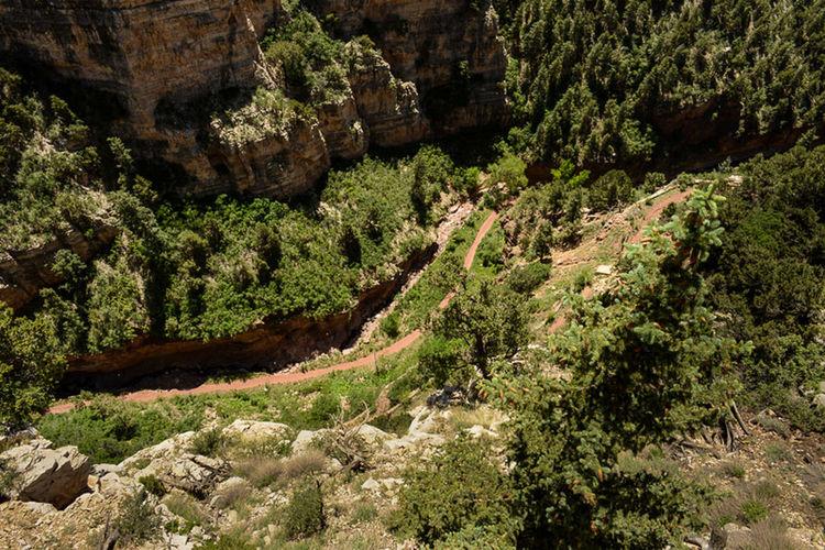 Canyon Taking Photos Nature Landscape