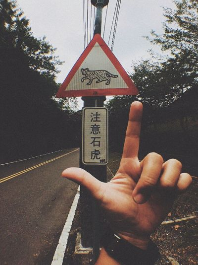 Cropped hand holding text on road against trees