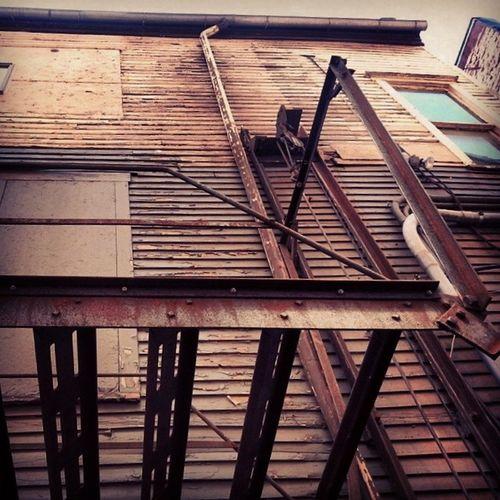 Clapboard and fire escape Ruraldecay Rust Flaking Dryrot boardedwindows alley fireescape Susquehanna pennsylvania morning