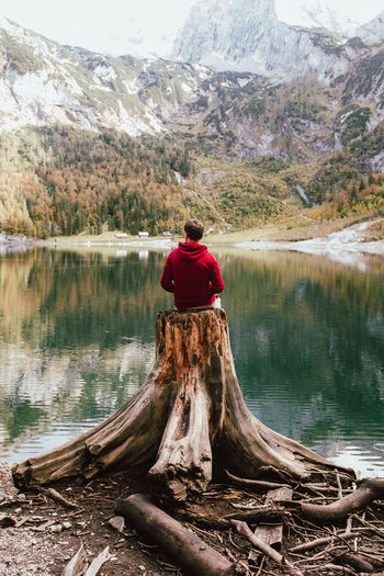 Rear view of man sitting on tree stump by lake in forest