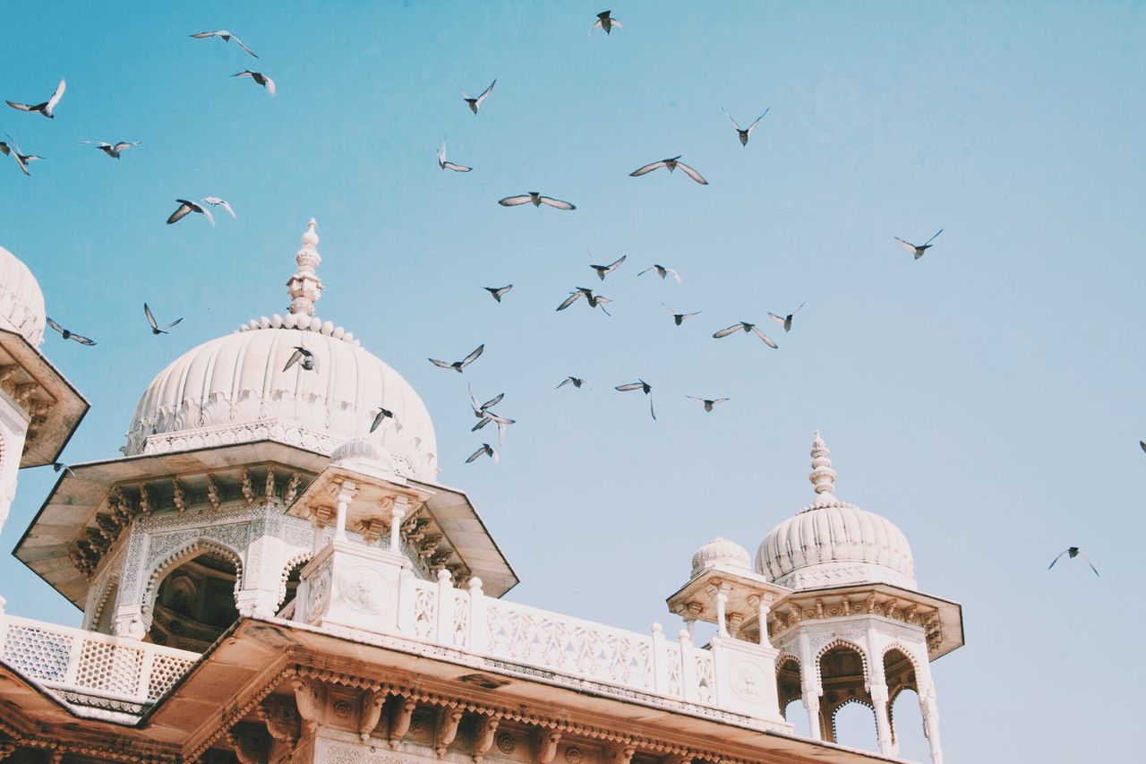 Low angle view of birds flying over historic building against sky