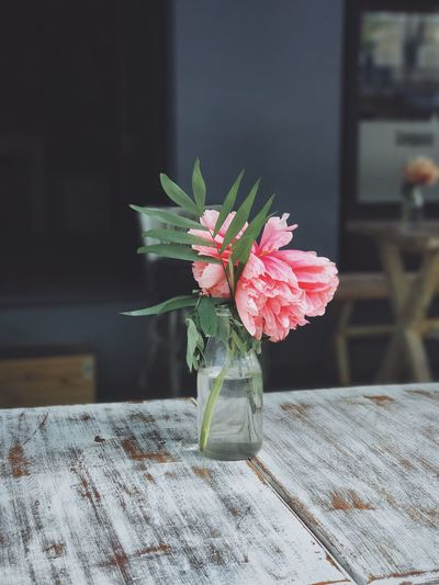 Flower Table No People Wood - Material Petal Beauty In Nature Nature Indoors  Flower Head Growth Close-up Fragility Day Freshness