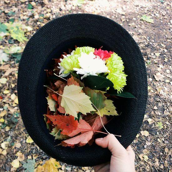 Vscocam VSCO Vscoautumn Vscohat vscoleaves leaves autumn followme flowers