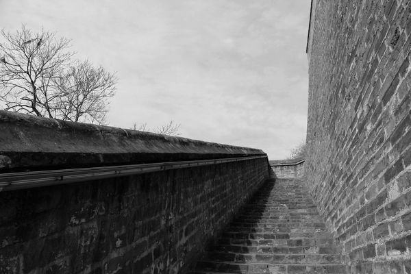 Historical Building Old-fashioned Tranquility Wall A Moment In Time Architecture Bare Tree Black And White Blackandwhite Building Exterior Built Structure Chinesewall Grey Sky Historic Old Buildings Sky Wall - Building Feature Black And White Friday