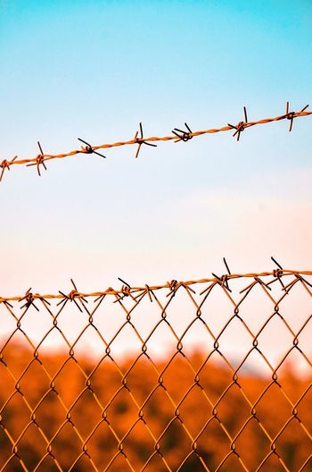 Close-up Of Barbed Wire Fence. Concept Conceptual Cover Security Bar Close-up Backgrounds Abstract Spines Metal Danger Chainlink Fence Clear Sky Security System Sunset Barbed Wire Razor Wire Protection Exclusion Safety Silhouette Wire Forbidden Power Cable Do Not Enter Sign Chainlink Wire Mesh Thorn Boundary Barricade Fence Sharp