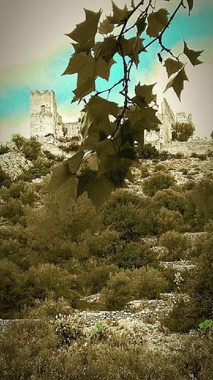 Check This Out Enjoying Life 2015  Monuments Collected Community Castillos Perputxent Tardor/Autumn Paisatges de tardor