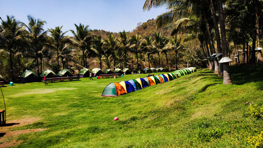 View of tent on field against trees
