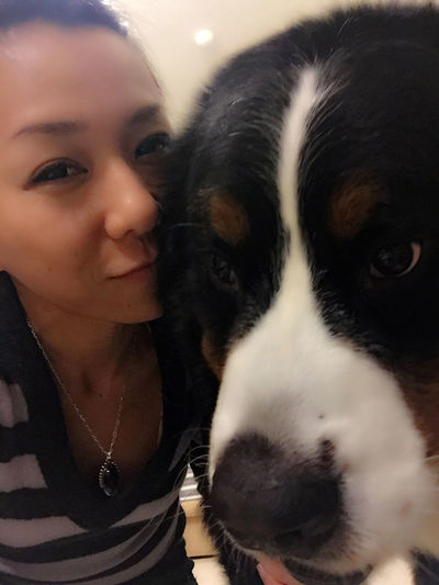 ??➰ Bigdog Bigdogsofinstagram Bmd Bigpuppy Bernerpup Bernersennen Bernerlife Love Life