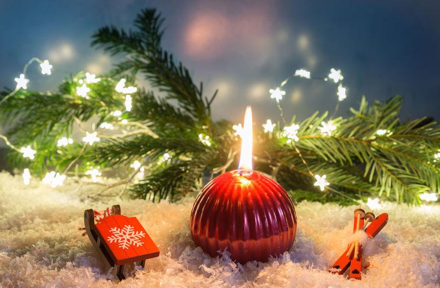Burning Candle Christmas Happy Lights Merry Christmas! New Nightphotography Sledge Sleigh Branch Celebration Christmas Decoration Fir Holy Illuminated Nature Night No People Outdoors Ski Sky Stars Tree Year