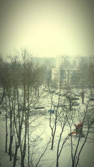 Бррр Winter Snow No People