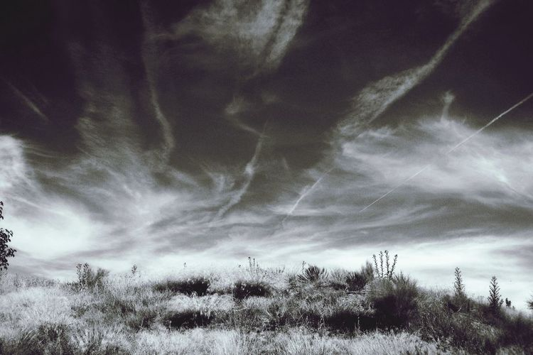 Bw_collection NEM Black&white The Minimals (less Edit Juxt Photography) Landscape