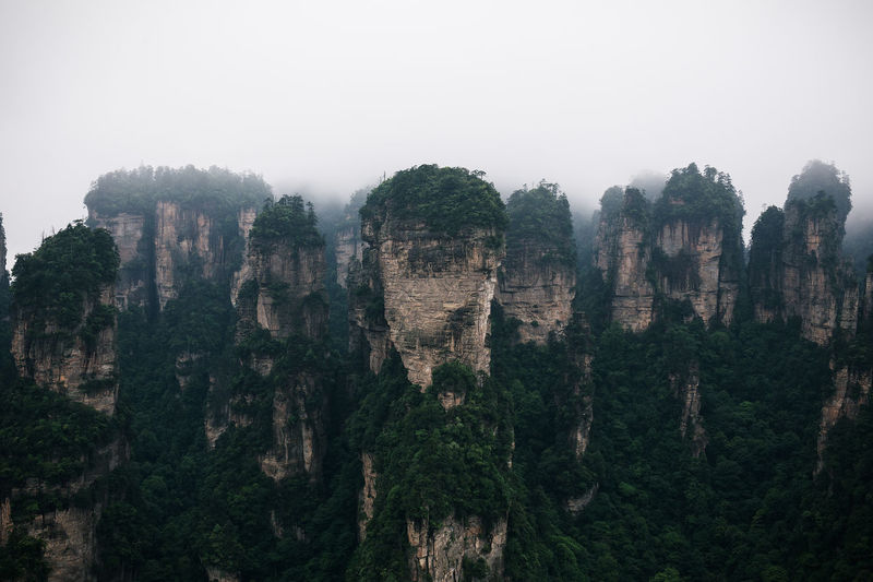Zhangjiajie National Park in Hunan Province, China Awesome Beautiful Beauty In Nature China Cliff Climb Fine Art Photography Geology Idyllic Landscape Limestone National Nature Park Playful Rock Rock - Object Rock Formation Scenics Stunning Tranquil Scene Tranquility Unbelievable Unreal Zhangjiajie EyeEm Diversity The Great Outdoors - 2017 EyeEm Awards