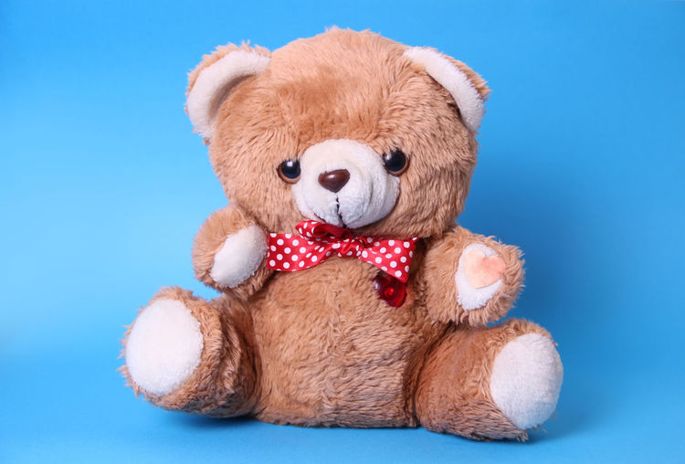 Close-Up Of Teddy Bear Over Blue Background