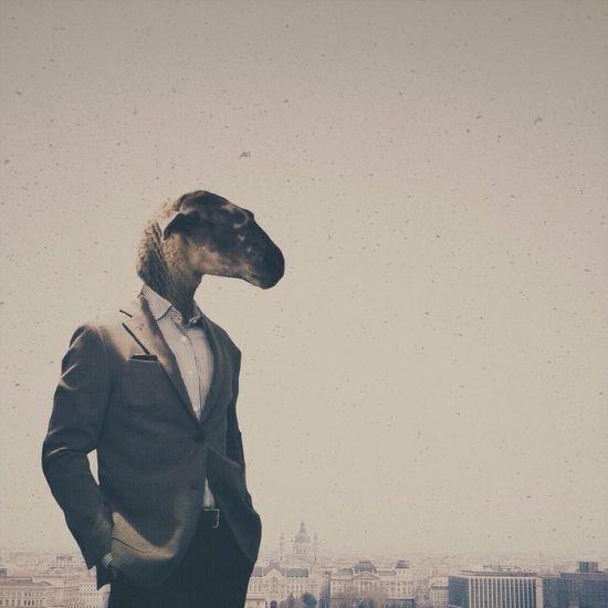 View of businessman wearing animal mask