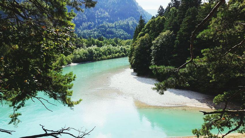 Tree Water Idyllic Mountain Forest Nature Beauty In Nature River Lech Füssen, Bayern, Deutschland Allgäu Allgäuer Alpen Allgaeu