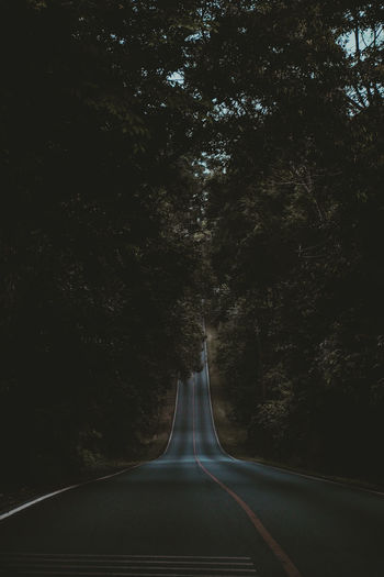 Empty road amidst trees at night