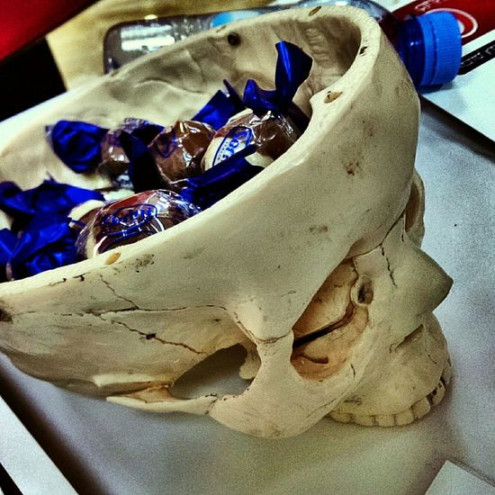 Check This Out Chocolate Sweets Skullcandy Skull College HTC_photography