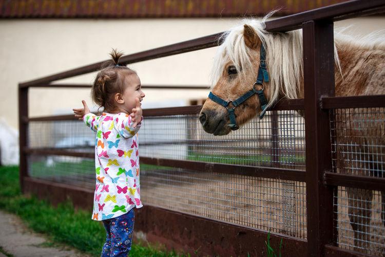 Full length of girl standing in ranch