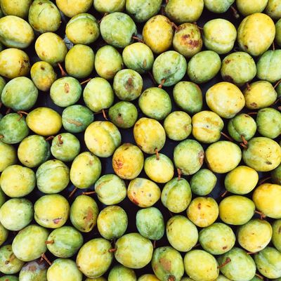 Homegrown organic greengage plums Freshness Fruit Healthy Eating Abundance Full Frame Food Large Group Of Objects Backgrounds For Sale Retail  Market Stall Food And Drink No People Market Day Outdoors GReEngage Fruits Food And Drink