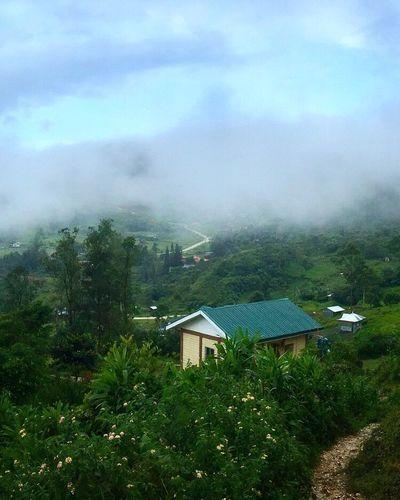 House Day Sky Outdoors Nature Fog Beauty In Nature Scenics Mountain Mountain Range Scenery Travel Destinations Tourism Cloud - Sky Osmeña Peak Cebu City, Philippines