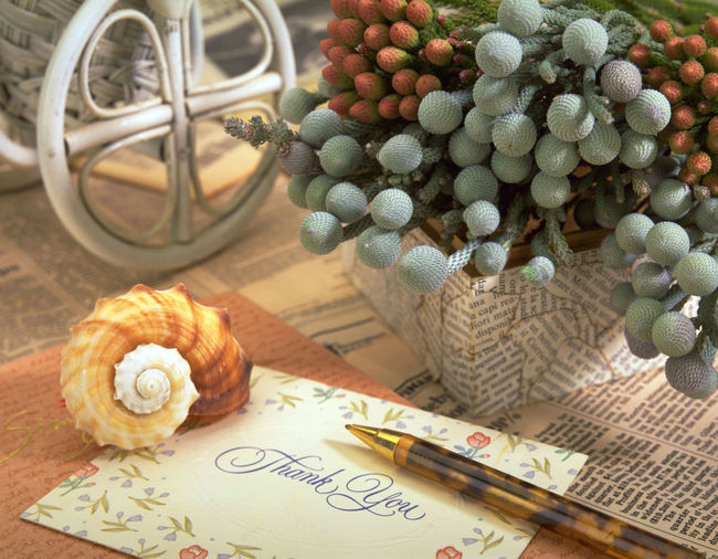 A lot of flower presentations, will be a good design material type graphics, received a lot of attention. For example cards, wishes, love, caring, greetings. Attention Thank Thinking Blessing Card Close-up Concern Day Design Floral Flower Freshness Gift Greetings Indoor Indoors  No People Paper Shell Studio Shoot Table Warm