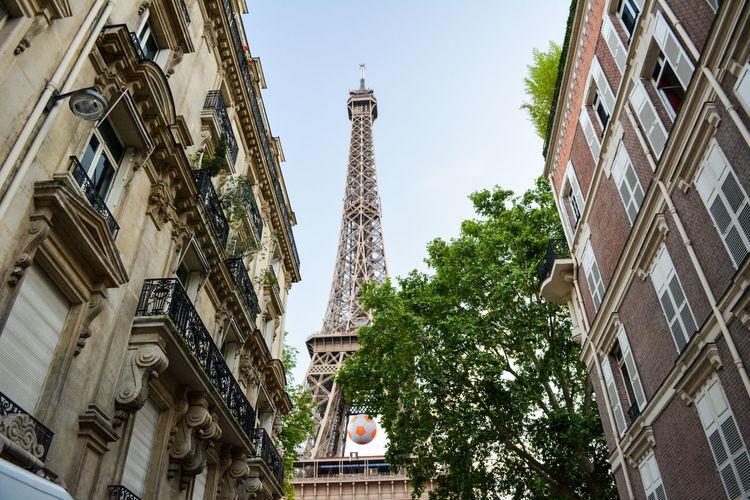 Capital Cities  City Eiffel Tower Eurocup  Eurocup2016 No People Outdoors Paris Tower Travel Destinations Tree