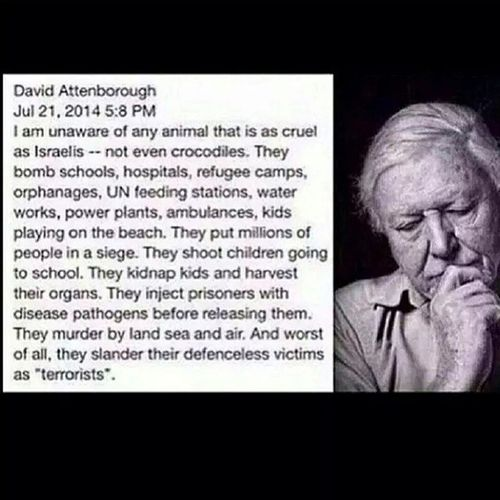 DavidAttenborough Gaza War Freepalestine