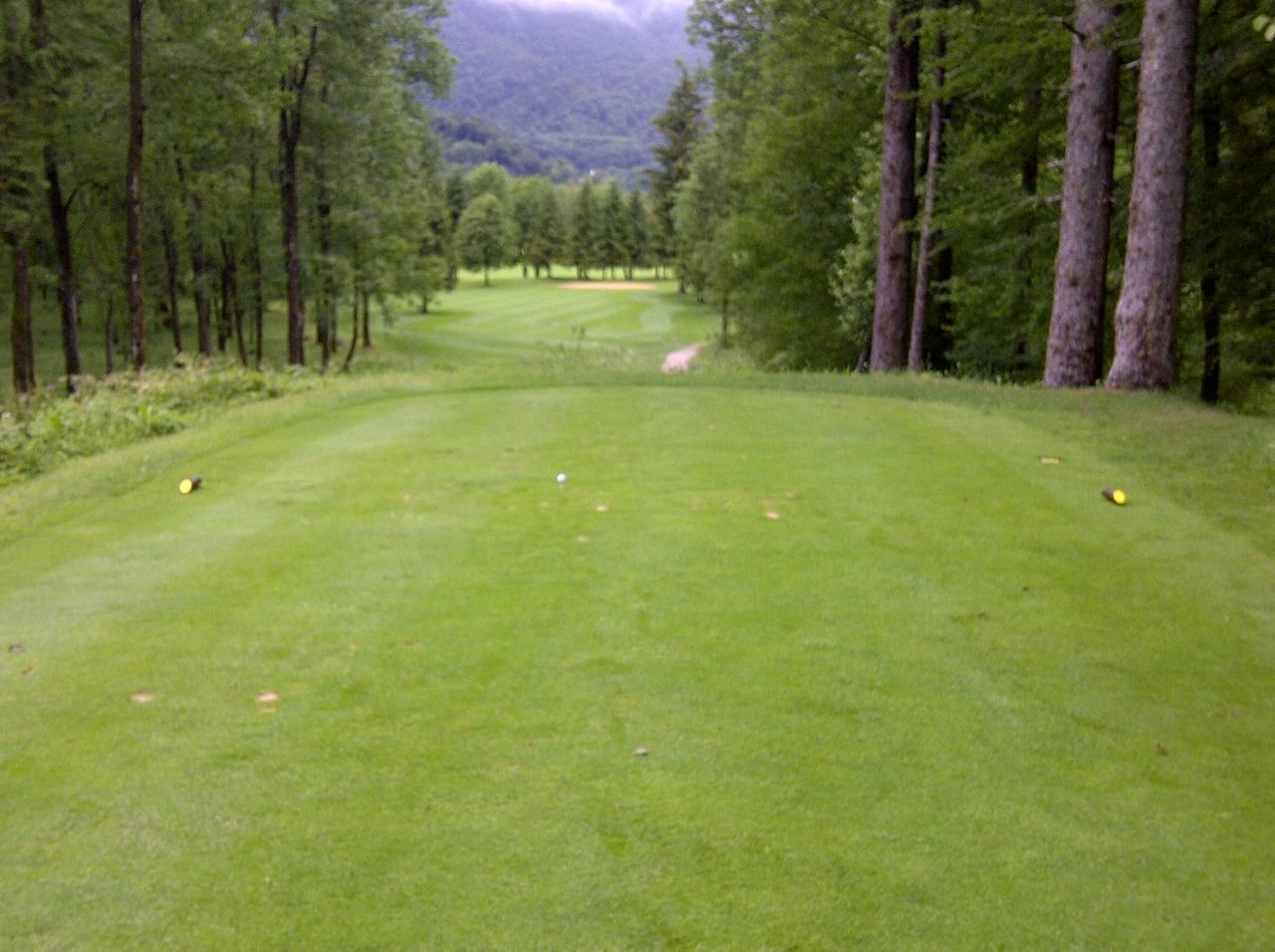 golf course, golf, tree, green - golf course, grass, green color, nature, scenics, no people, beauty in nature, outdoors, sport, day