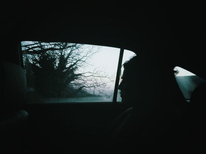 Window Silhouette Tree Sky One Person Car Wood Mist Mystical Resist Art Is Everywhere Break The Mold TCPM The Great Outdoors - 2017 EyeEm Awards The Portraitist - 2017 EyeEm Awards Mobility In Mega Cities Capture Tomorrow International Women's Day 2019