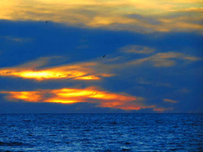 Atardecer Aves 🐥🐤🐥 Beauty In Nature Cielo Colorido Nature Outdoors Sky Sunset