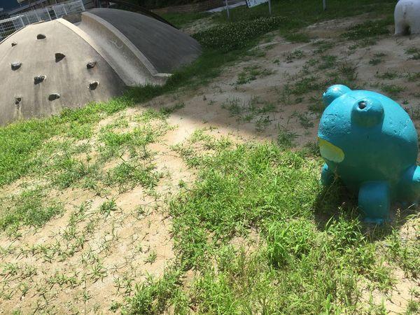 #日本 #japan #写真好きな人と繋がりたい #写真 #photography #photo #カエル #travel #公園 #大阪府 #大阪 #かえる Green Art Park カエル High Angle View No People Nature Green Color Sunlight Animal Day