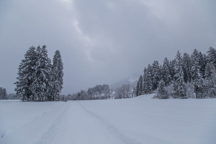 Allgäu Winter Winter Landscape Wintertime Beauty In Nature Cloud - Sky Cold Temperature Day Frozen Landscape Nature No People Outdoors Scenics Sky Snow Tranquil Scene Tranquility Tree Weather White Color Winter Winter Wonderland