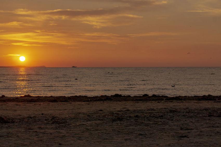 Baltic Sea Beach Beauty In Nature Cloud - Sky Horizon Horizon Over Water Idyllic Land Nature No People Non-urban Scene Orange Color Outdoors Scenics - Nature Sea Sky Sun Sunset Tranquil Scene Tranquility Water