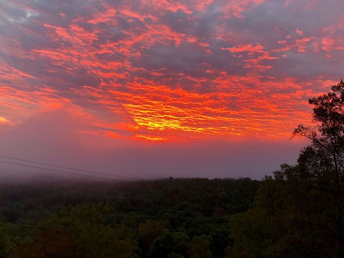 Fiery Sunrise over the Smokies Sunrise Beauty In Nature Sky Scenics - Nature Tranquil Scene Cloud - Sky Tranquility Tree Plant Orange Color Idyllic No People Nature Growth Environment Landscape Dramatic Sky Non-urban Scene Outdoors Land