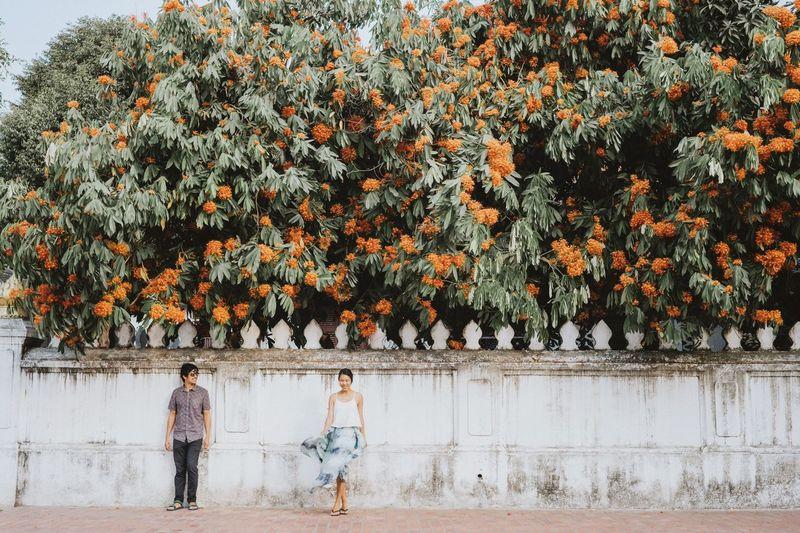 Rear view of people walking on flowering plants