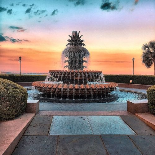 Sunset Water Plant Nature Fountain Cloud - Sky
