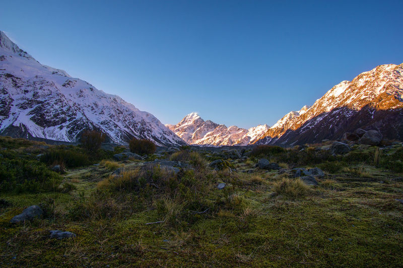 The valley to the Mount Cook Mountain Sky Scenics - Nature Beauty In Nature Plant Tranquil Scene Tranquility Environment Landscape Grass Nature No People Mountain Range Non-urban Scene Blue Clear Sky Day Winter Idyllic Snowcapped Mountain Outdoors Mountain Peak