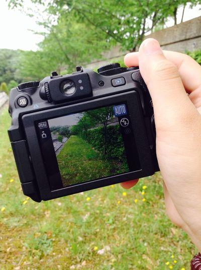 Nature EyeEm Nature Lover Camera