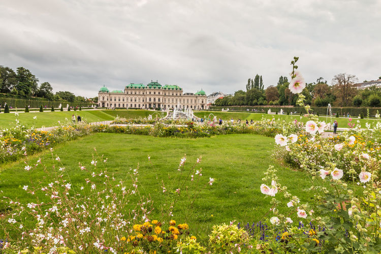 Belvedere Palace garden in Vienna Vienna Vienna, Austria Belvedere Palace Plant Flower Flowering Plant Architecture Grass Built Structure Cloud - Sky Building Exterior Nature Sky Day Tree Growth Building Green Color Beauty In Nature No People Freshness Park Travel Destinations Outdoors Ornamental Garden