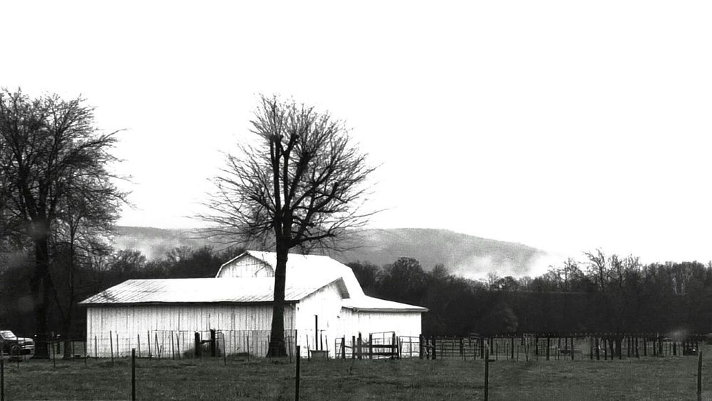 Check This Out Outdoor Photography Farmland Farming Country Pattern, Texture, Shape And Form Barn Countrylife Farmhouse Countrymusic  Notesfromtheunderground Farmanimals Farm Life Peaceful On The Farm Blackandwhite Photography Monochrome