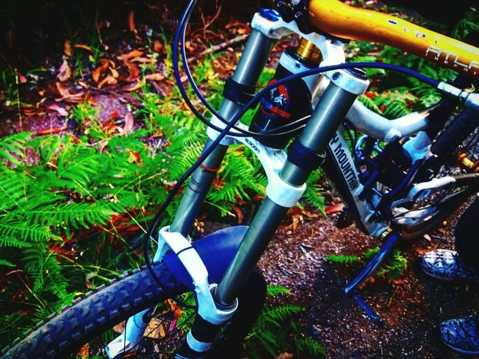 Downhill MTB Freeride Descenso RedBull Extreme Sports Awesome
