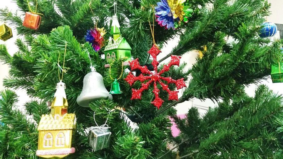 Christmas tree against plants