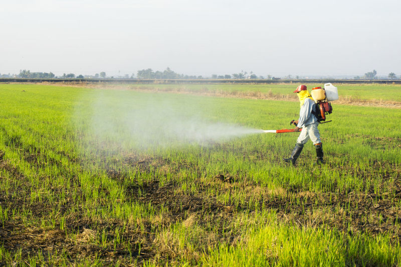 Adult Adults Only Agriculture Day Farmer Field Full Length Grass Growth Holding Landscape Manual Worker Men Nature Occupation One Man Only One Person Only Men Outdoors People Real People Rural Scene Spraying Standing Working Investing In Quality Of Life