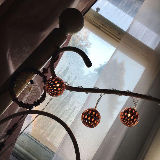 Fairy Lights In Wintertime / Winter